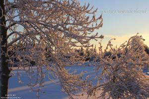 cold-light-outside-sky-snow-Favim.com-171414
