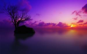 sunset-sunset-photography-sunset-images-sunset-photos-sunset-pictures-Favim.com-613986