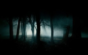 dark-fog-forests-landscapes-night-1440x900