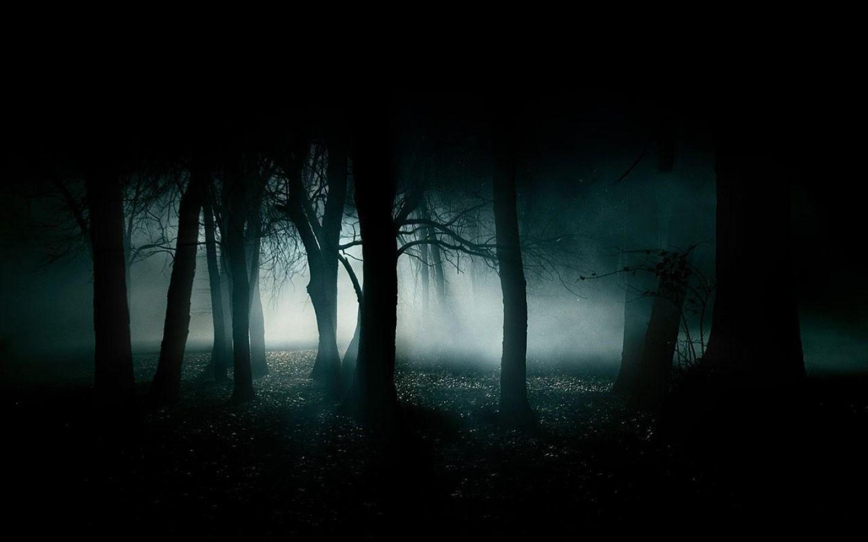 Fog — Drama 16 Stage Lighting